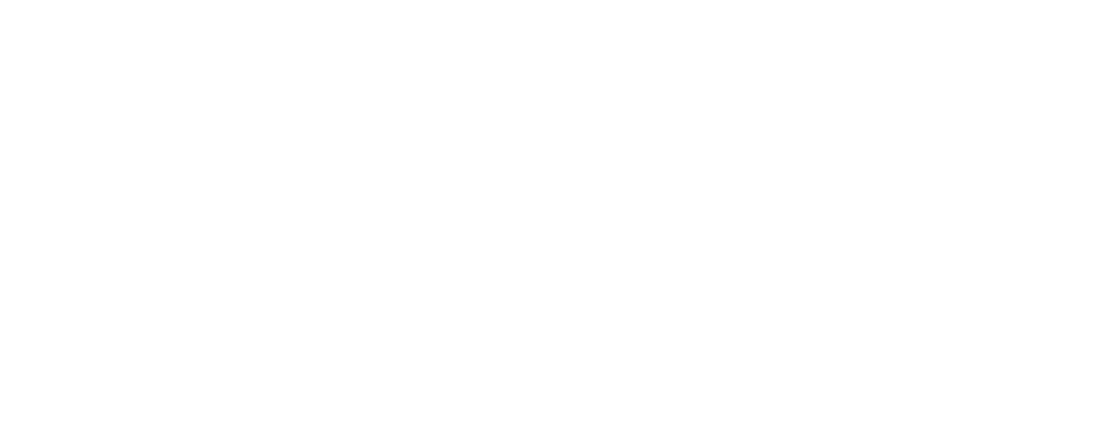 EnergyFlo logo, white